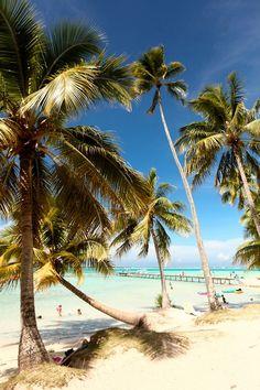 The Cherry Blossom Girl - Ninamu Moana 35 Dream Vacations, Vacation Spots, Photography Gallery, Travel Photography, Unbelievable Pictures, Cherry Blossom Girl, Grain Of Sand, I Love The Beach, Culture Travel