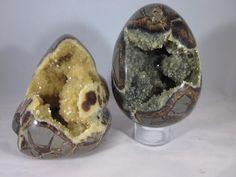 Premium Set of 2 Hollow Septarian Pieces from Utah (Egg & Freeform)