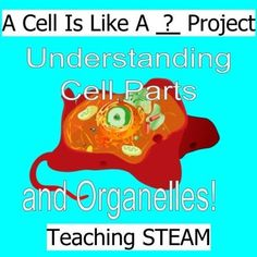 All life is made up of cells! Analogies help students understand cells and their functions within. In this project students will be taking a closer look at how Eukaryotic cells function, their organelles, and how we can relate them to our much larger world.