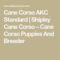 Cane Corso AKC Standard | Shipley Cane Corso – Cane Corso Puppies And Breeder