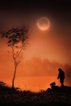*.*★ . ✶•´ ☆´,•*´¨★ ¸✶.•´¸.•*´✶ ☆´¸.•★´ ¸.•`✶* ☆´¸★ Autum moon
