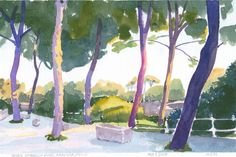 Seven Umbrella Pines, Siracusa, Sicily; original watercolour painting, small art, watercolor painting, Italy, not a reproduction, colourful, landscape, evening light, trees, forest, purple, for sale, Watercolour Paintings, Watercolor, Small Art, Siracusa Sicily, Landscape, The Originals, Trees, Italy, Purple