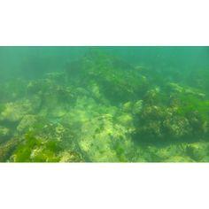 Snorkeling in Tyulenovo