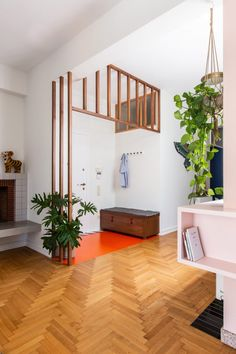 The entrance area is wrapped by a timber framework screen and a wall of bright blue wardrobes span the hallway between the two bedrooms. Athens Apartment, Family Apartment, Green Plywood, Plywood Storage, Wooden Dining Tables, Dark Interiors, Apartment Interior Design, Bespoke Furniture, Open Plan Living