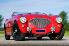 Austin-Healey 100/4 (BN1) - 1955