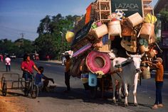 """E-commerce giant, Lazada Philippines, makes a game-changing move by putting up a mobile pop-up store in the form of a 3-wheeled cart pulled by a cow named Luz. Just in time for the summer season, the mobile pop-up store will be offering over 7,107 tag-init essentials such as floaties, shades, tsinelas, and the ever-popular, t-shirt-at-shorts-na-pang-swimming combo. Lazada CEO and Co-founder, Inanc Balci, stated in an interview """"This is a business move we have been planning for years."""
