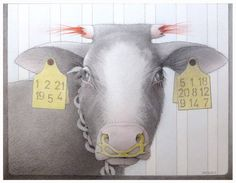 "Jane Lewis ""Earthlings - Tagged & Fettered"" (graphite and coloured pencil on paper) Jane Lewis, Kindness Matters, Coloured Pencils, First Art, Worlds Of Fun, Cow, Art Pieces, Religion, Graphite"