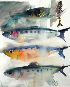 sardines by Nicolas Doucedame #watercolour jd