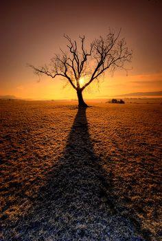 Carse of Stirling Sunrise, Blair Drummond, Scotland_ Great Britain