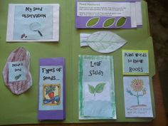 Plant Science Lapbook and Unit study~love the free printables and the spiritual integration with Sower and the Seed