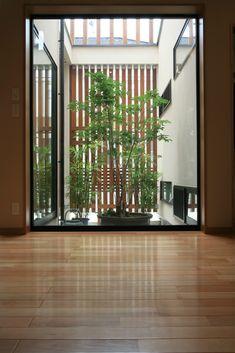 Living room view Japanese home design Japanese Home Design, Small Japanese Garden, Japanese Style House, Japanese Interior, Atrium Design, Patio Central, Greenhouse Plans, Interior Garden, Architect Design
