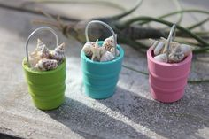 Miniature Beach Bucket of Seashells, Starfish,  and a Beach Shovel - by Landscapes In Miniature via Etsy - from the fairies