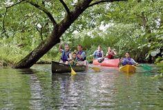 Le canoë ou le kayak