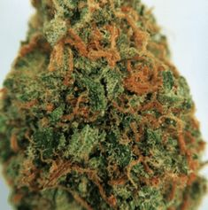 Cannabis Shop, Cannabis Edibles, Edibles Online, Girl Scout Cookies, Buy Weed Online, Medical Marijuana, Herbalism, The Cure