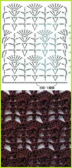 Graduated Shells Diagram Pattern Más