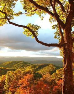 Scott County, Virginia...more like God's country, absolutely beautiful!