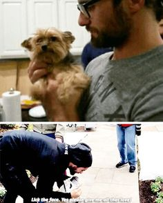 Seth Rollins and dogs, my weak spot -- one of the weak spots anyway :P
