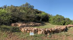 Walking in the ruins of 