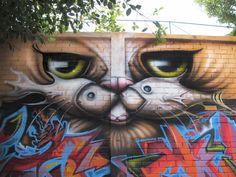 fishcats : Macaé R.J 2011 Evento Kolirius Internacional!!<3<3<3
