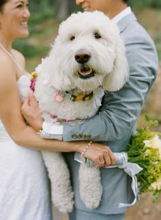 Love this Dog! Just a big baby ;)  See the wedding on #SMP Weddings: http://www.stylemepretty.com/little-black-book-blog/2013/12/19/northstar-zephyr-lodge-wedding/ Photography: Em The Gem
