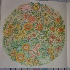 Madalena de flores jardim secreto
