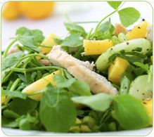 Pea Shoots, Mango and Smoked Chicken Salad