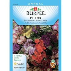 Burpee Phlox Fordhook Finest Mix Seed