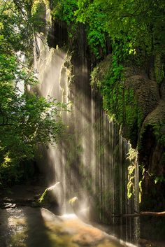 Waterfall- Gorman Falls, Texas