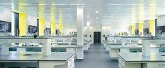 microbiology laboratory university - Google Search