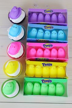 Easy Easter Peeps Cupcakes for Kids to Make Cupcake Recipes For Kids, Easter Recipes, Peeps Recipes, Hoppy Easter, Easter Eggs, Easter Bunny, Holiday Desserts, Holiday Fun, Holiday Treats