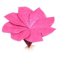 This site has tutorials for nearly 50 origami flowers