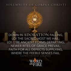 """Down in adoration falling, Lo! The Sacred Host we hail; Lo! O're ancient forms departing, Newer rites of grace prevail; Faith for all defects supplying, Where the feeble senses fail."" -St. Thomas Aquinas"