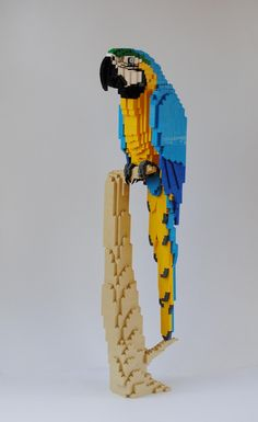 Life-size Blue and Gold Macaw in LEGO