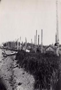 View of Masset village from the South looking North. Native American Wisdom, American Indians, Native Canadian, Haida Gwaii, Haida Art, Tlingit, Native Design, Old Trees, Totem Poles