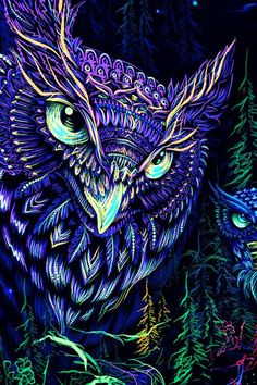 Owl Wallpaper, Trippy Wallpaper, Psychedelic Art, Drawing Simple, Banner Backdrop, Owl Cartoon, Psy Art, Visionary Art, Light Painting