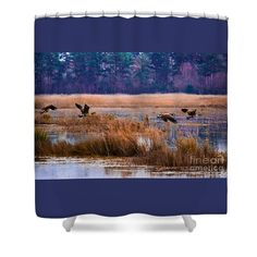 Canada Shower Curtain featuring the photograph Canadian Flight 4 by Scott Hervieux