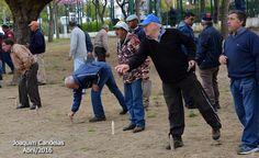 Campomaiornews: XI prova Torneio Distrital do Jogo da Malha no rec...