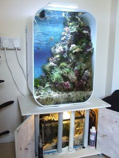 BiOrb LIFE reef conversion story -- a lot of work for someone who knows little about fish (like me) but this is gorgeous!