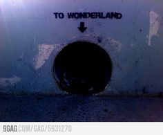 Found the entrance to Wonderland! Pretty legit, guys.