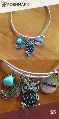 Alex Ani Style Bracelet Owl Silvertone Owl bracelet.Great condition. Jewelry Bracelets