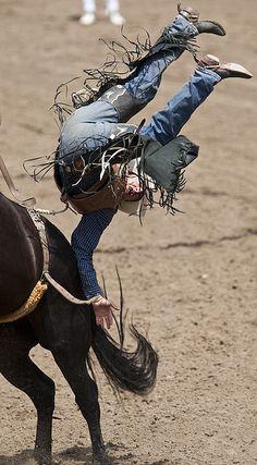 2009 Calgary Stampede by Calgary Stampede, via Flickr