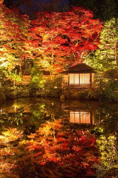 Japanese garden in fall.