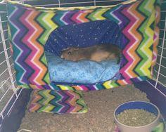 Homemade guinea pig loft bed