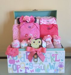 Pink Owl and Friends Baby Girl Gift Basket