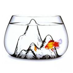 The holiday wish list has officially begun. Yes Santa  Baby, I want a Fishscape Fishbowl By Aruliden - Home Furnishings - Unica Home