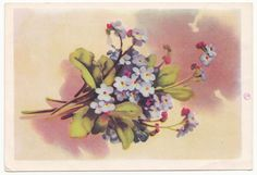 flowers bouquet forget-me-nots Russian old card