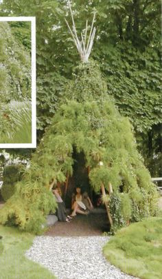Great Backyard accent piece. Green Teepee... for animals & kids alike. plus it would look like a gnome house. magical.