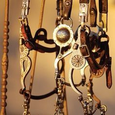 headstalls and bits
