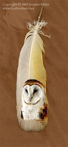 A barn owl portrait, painted on a naturally molted (shed) cockatoo tail feather. Acrylic on x feather. Owl Feather, Feather Crafts, Bird Feathers, Painted Feathers, Colorful Feathers, Colorful Birds, Owl Art, Bird Art, Native Art
