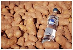 How To Make Authentic Vodka Or Schnapps From Potatoes. See how to make your very own vodka or schnapps at home for cheap using potatoes. Easy to make. Booze Drink, Cocktail Drinks, Fun Drinks, Beverages, Cocktails, Beer Brewing, Home Brewing, New Recipes, Wine
